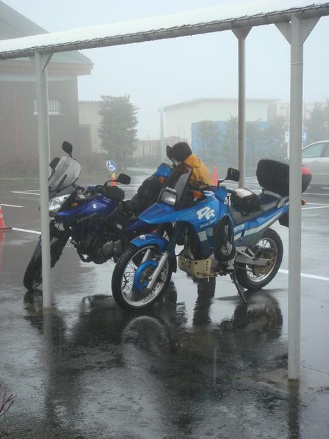 雨の霧降高原大笹牧場